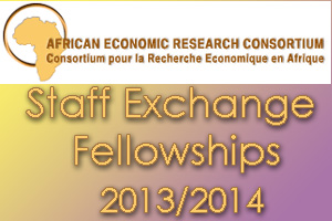 Staff Exchange Fellowships