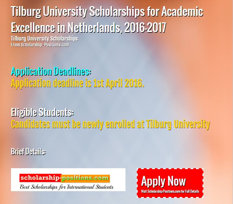 Tilburg University Scholarships