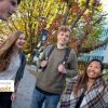 2017 University College Lillebaelt Scholarships for Non-EU Students in Denmark